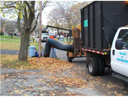 Image of Leaf Pickup Truck